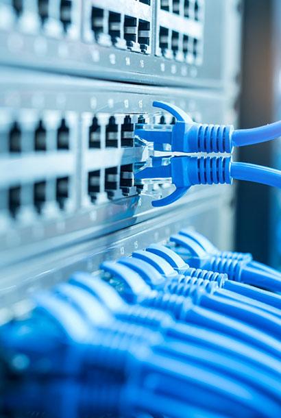 blue ethernet patch cables